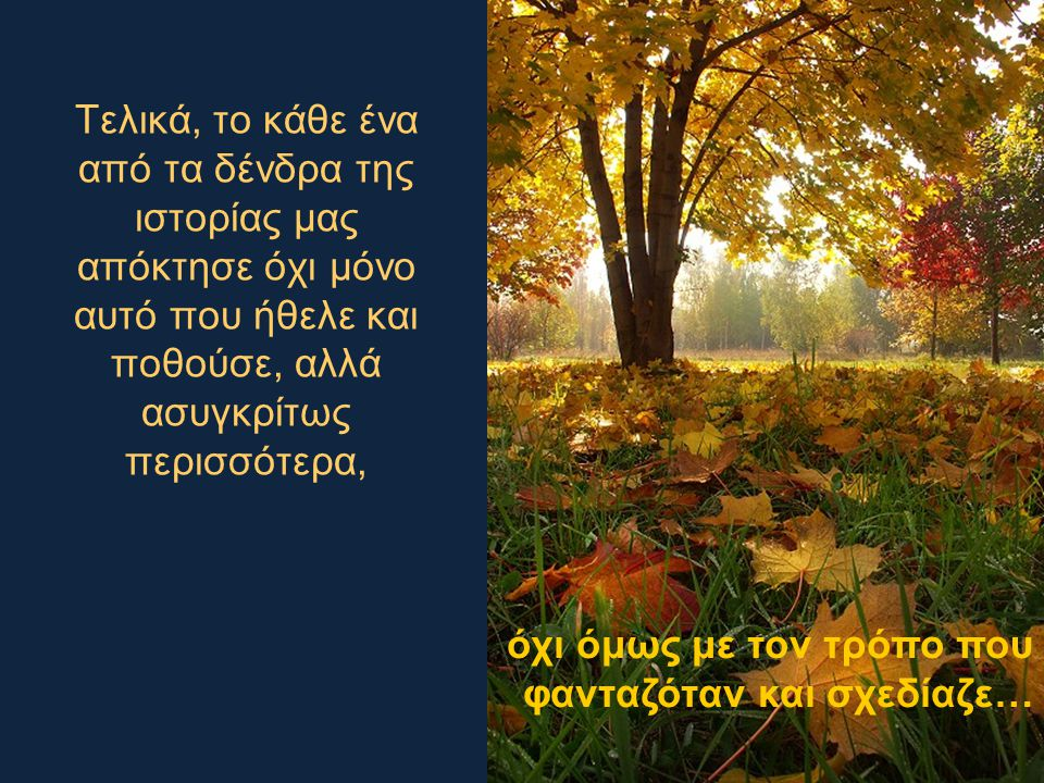Τελικά, το κάθε ένα από τα δένδρα της ιστορίας μας απόκτησε όχι μόνο αυτό που ήθελε και ποθούσε, αλλά ασυγκρίτως περισσότερα,