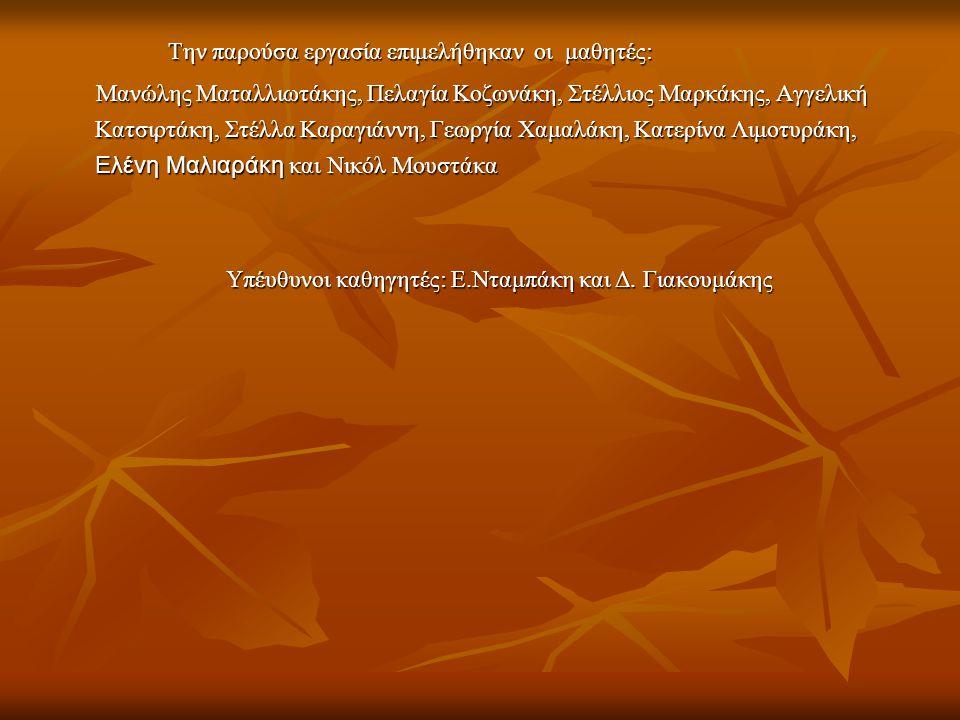 Υπέυθυνοι καθηγητές: Ε.Νταμπάκη και Δ. Γιακουμάκης