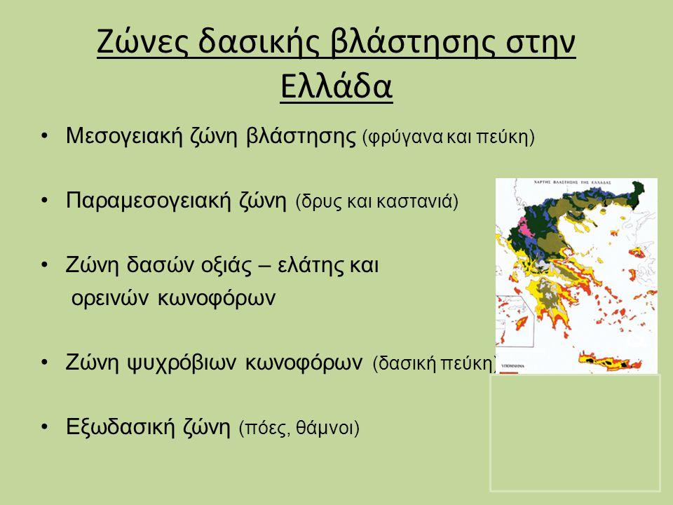 Ζώνες δασικής βλάστησης στην Ελλάδα