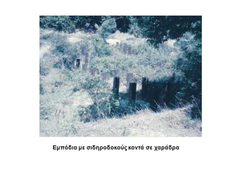 Εμπόδια με σιδηροδοκούς κοντά σε χαράδρα