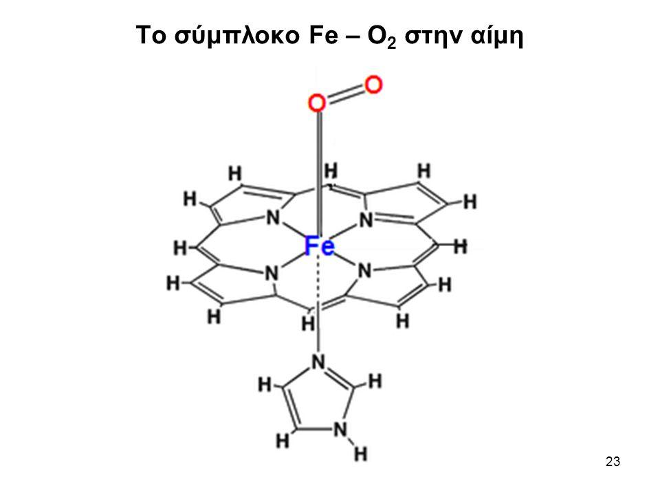 Το σύμπλοκο Fe – O2 στην αίμη