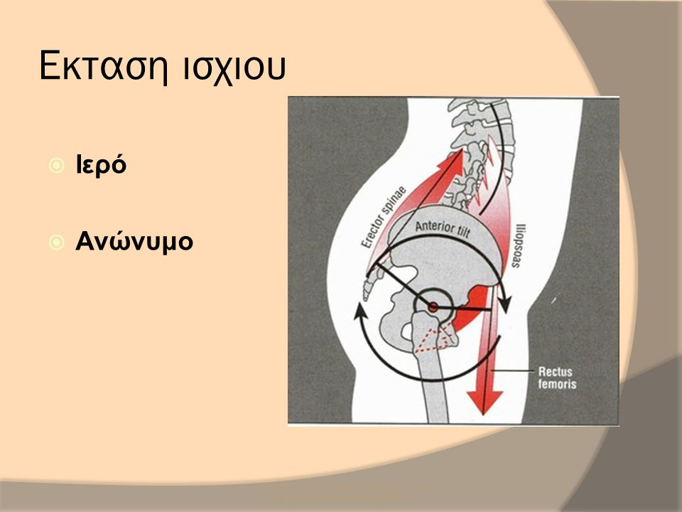 SCR/DR/AM/UH/NMS3/Sacro-iliac Joint Anatomy & Biomechanics/2008-9