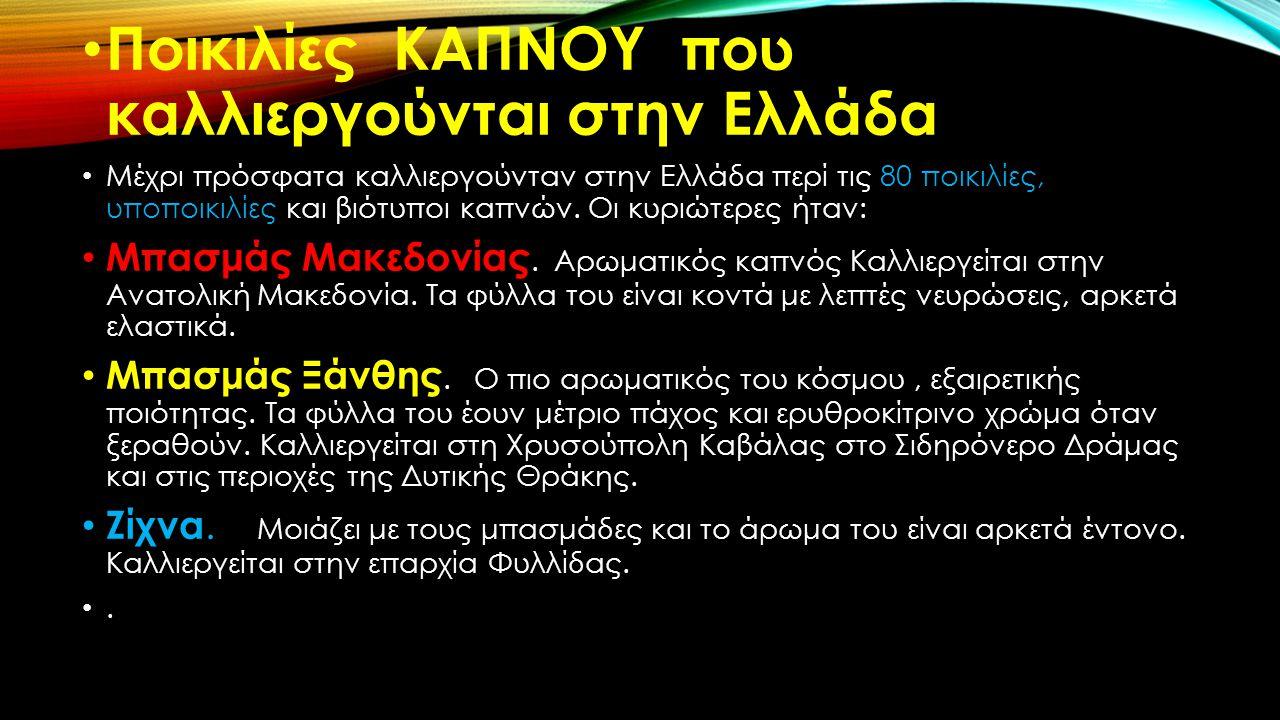 Ποικιλίες ΚΑΠΝΟΥ που καλλιεργούνται στην Ελλάδα