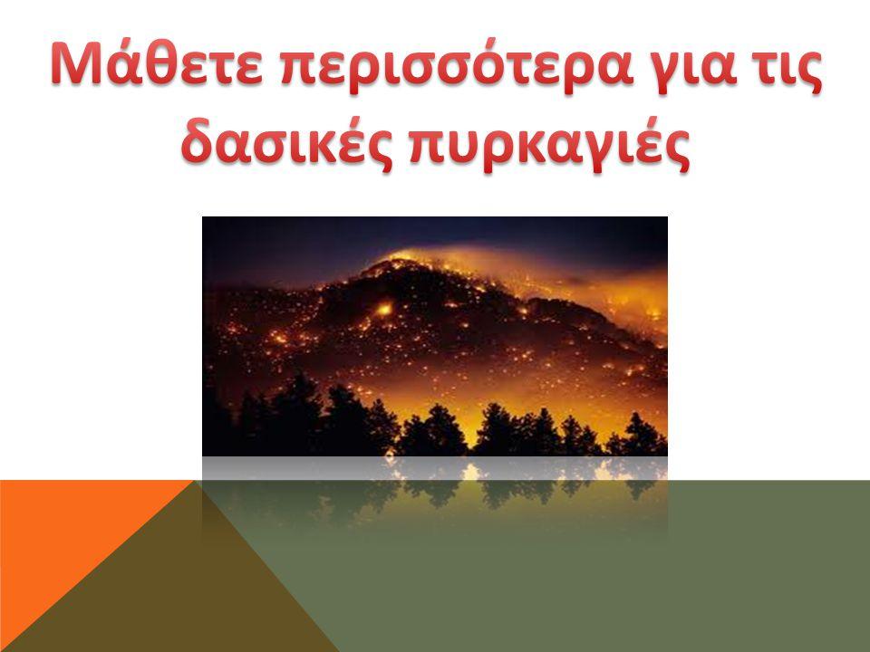 Μάθετε περισσότερα για τις δασικές πυρκαγιές