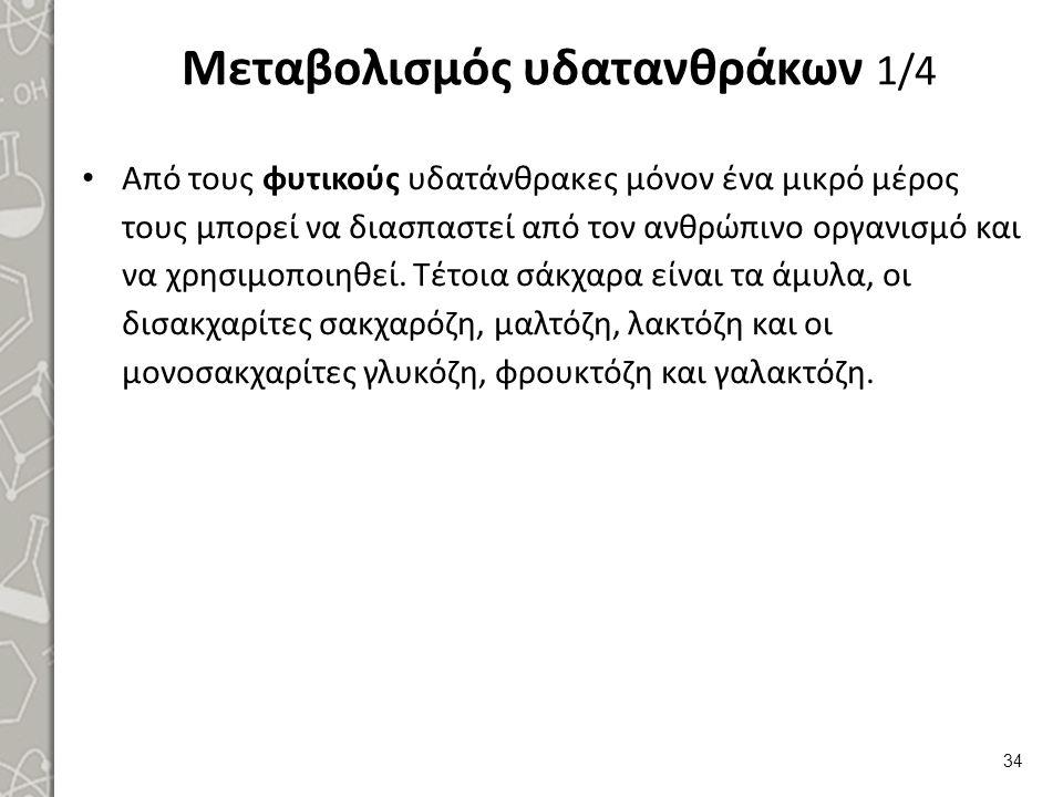 Μεταβολισμός υδατανθράκων 2/4