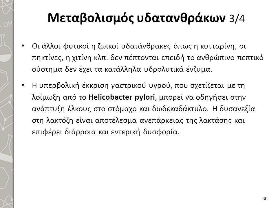 Μεταβολισμός υδατανθράκων 4/4