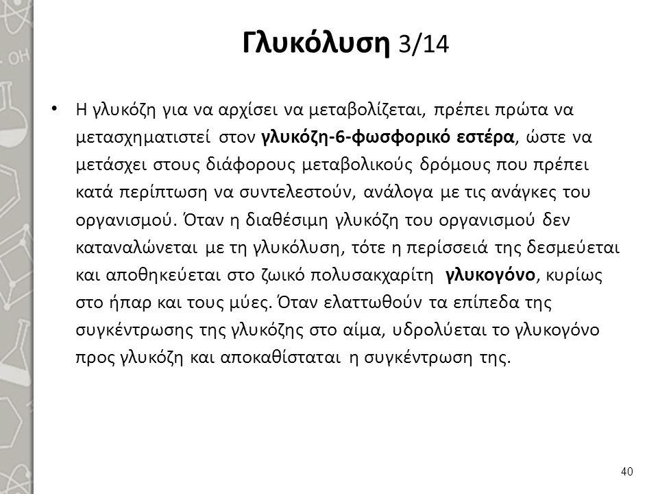 Γλυκόλυση 4/14