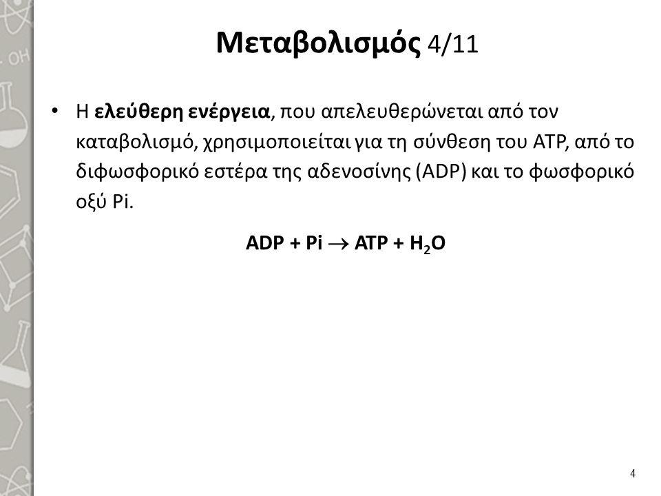ΑΤΡ + Η2Ο  ADP + Pi + E (7000 cal/mole ATP)