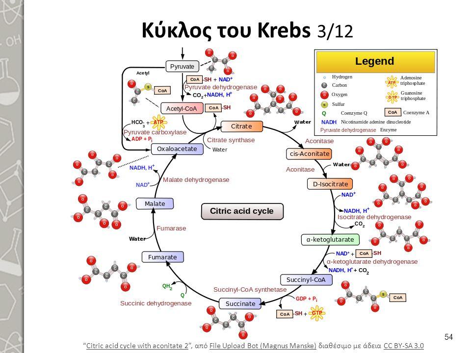 Κύκλος του Krebs 4/12 Ο κύκλος των τρικαρβοξυλικών οξέων, TCA cycle, είναι μία κυκλική σειρά αντιδράσεων.