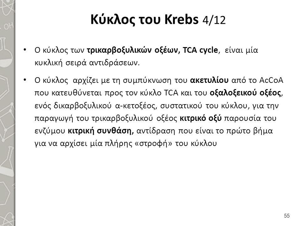 Κύκλος του Krebs 5/12