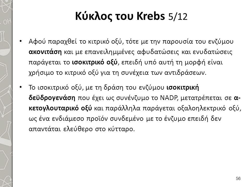 Κύκλος του Krebs 6/12