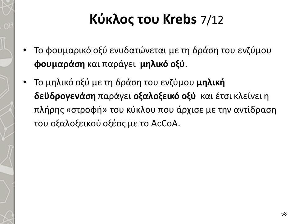 Κύκλος του Krebs 8/12