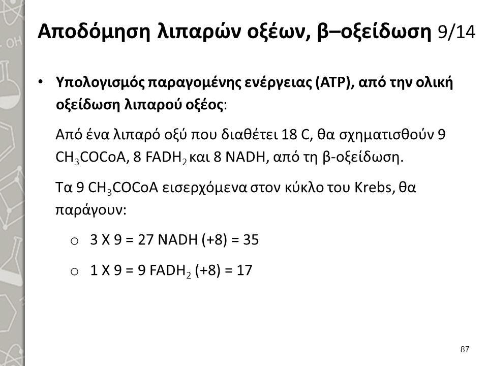 Αποδόμηση λιπαρών οξέων, β–οξείδωση 10/14