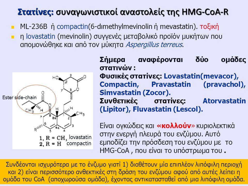 Στατίνες: συναγωνιστικoί αναστολείς της HMG-CoA-R