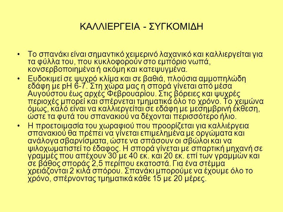 ΚΑΛΛΙΕΡΓΕΙΑ - ΣΥΓΚΟΜΙΔΗ