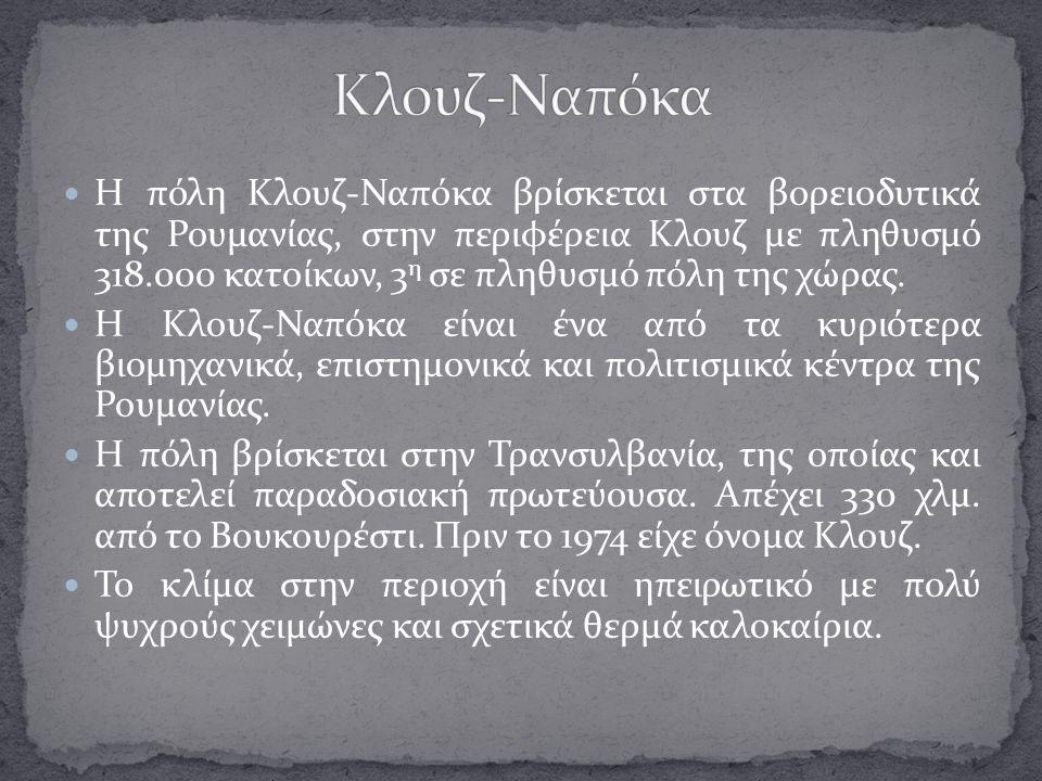 Κλουζ-Ναπόκα