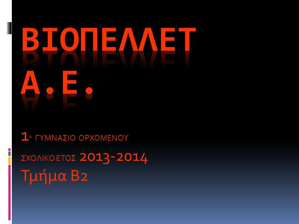 1ο ΓΥΜΝΑΣΙΟ ΟΡΧΟΜΕΝΟΥ ΣΧΟΛΙΚΟ ΕΤΟΣ 2013-2014 Τμήμα Β2