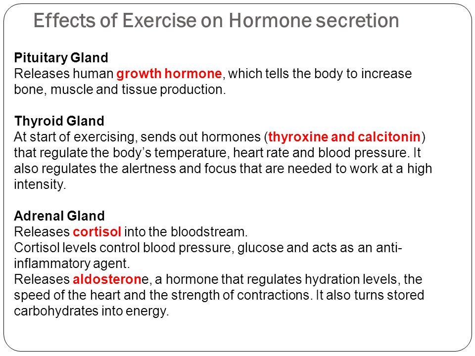 Effects of Exercise on Hormone secretion