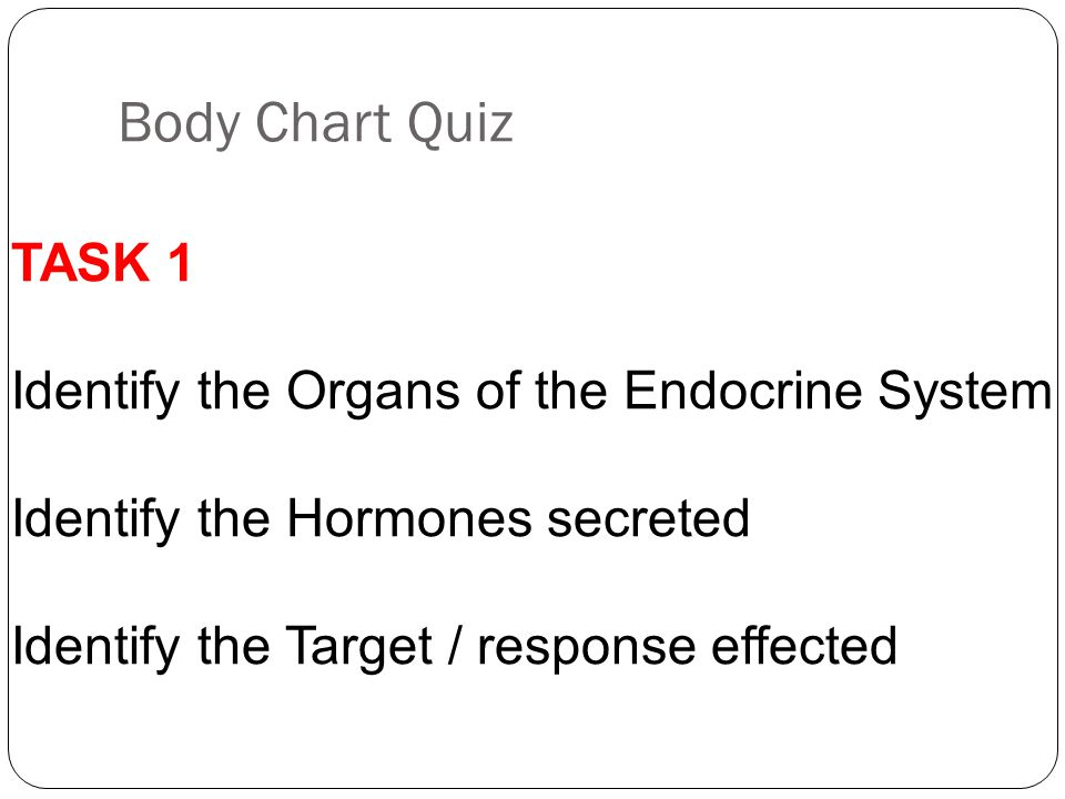 Body Chart Quiz TASK 1 Identify the Organs of the Endocrine System