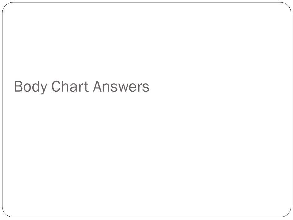 Body Chart Answers