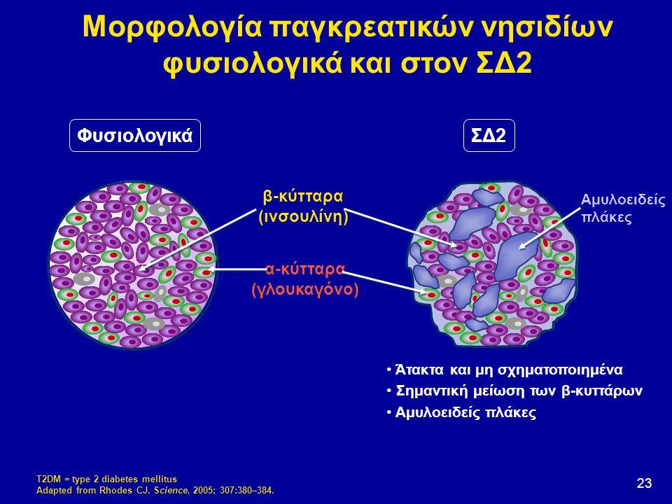 Μορφολογία παγκρεατικών νησιδίων φυσιολογικά και στον ΣΔ2