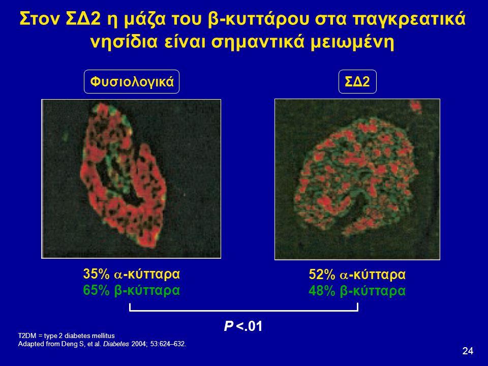 Στον ΣΔ2 η μάζα του β-κυττάρου στα παγκρεατικά νησίδια είναι σημαντικά μειωμένη