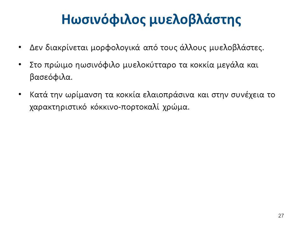 Ηωσινόφιλα πολυμορφοπύρηνα