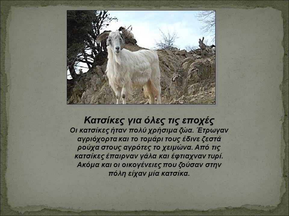 Κατσίκες για όλες τις εποχές