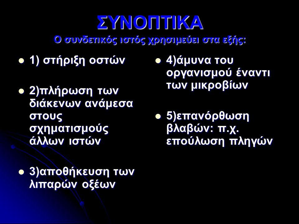 ΣΥΝΟΠΤΙΚΑ Ο συνδετικός ιστός χρησιμεύει στα εξής: