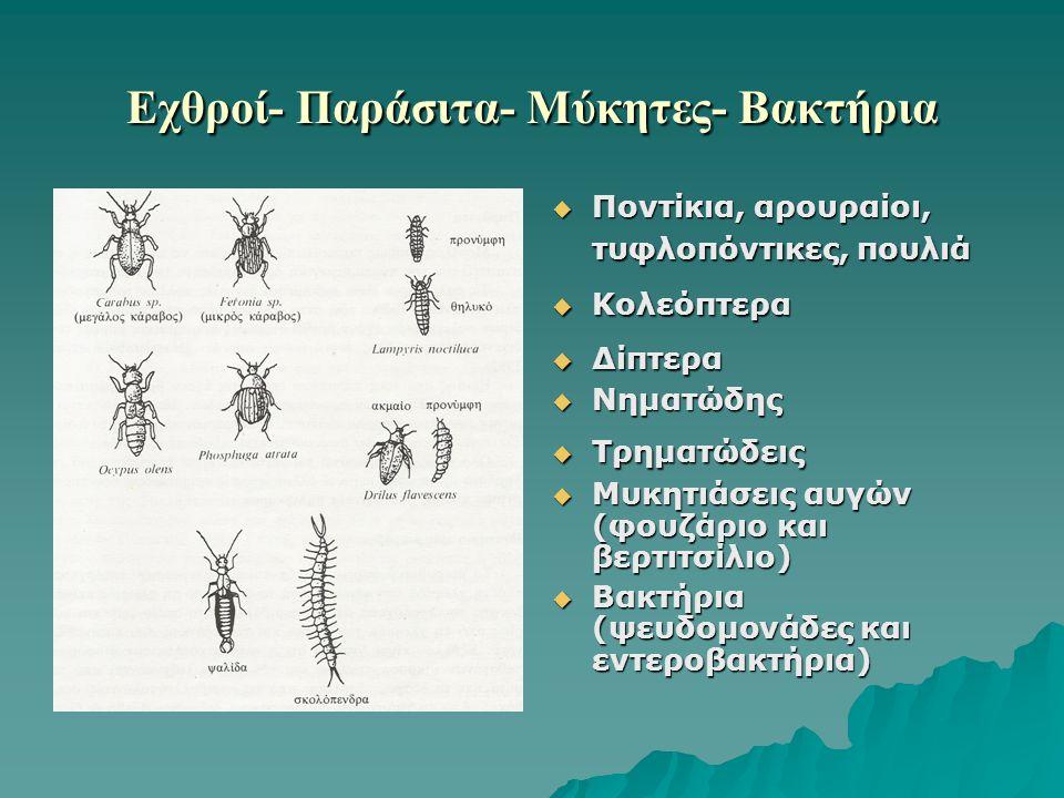 Εχθροί- Παράσιτα- Μύκητες- Βακτήρια