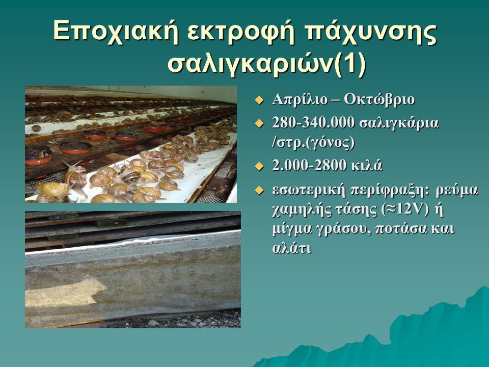 Εποχιακή εκτροφή πάχυνσης σαλιγκαριών(1)