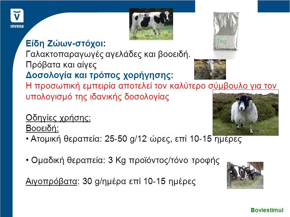 Γαλακτοπαραγωγές αγελάδες και βοοειδή. Πρόβατα και αίγες