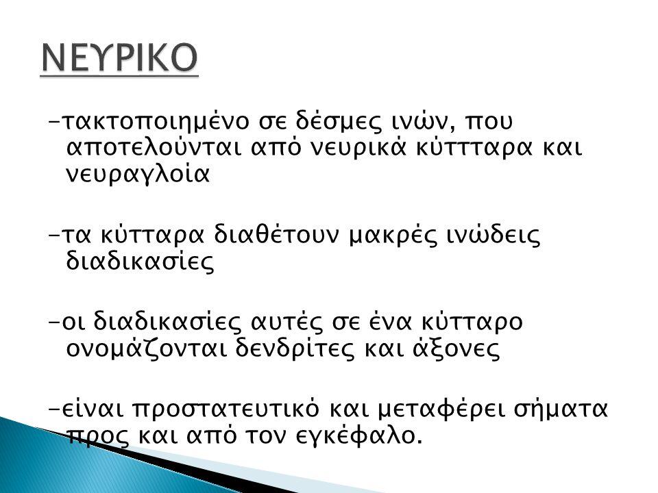 ΝΕΥΡΙΚΟ