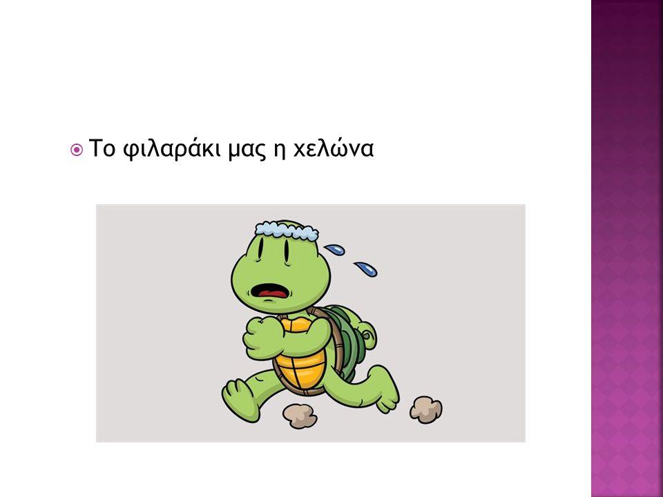Το φιλαράκι μας η χελώνα