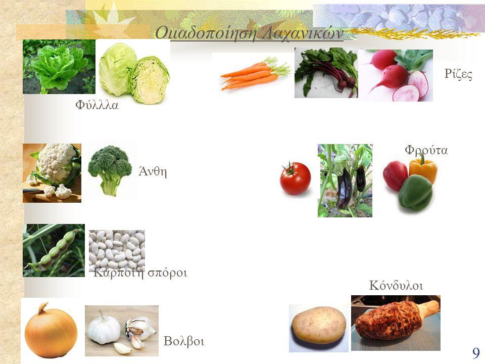 Ομαδοποίηση Λαχανικών