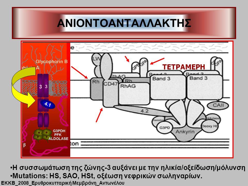 ANIONTOΑΝΤΑΛΛΑΚΤΗΣ TEΤΡΑΜΕΡΗ
