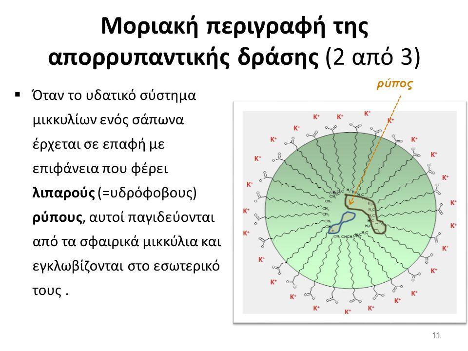 Μοριακή περιγραφή της απορρυπαντικής δράσης (3 από 3)