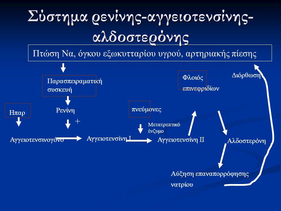 Σύστημα ρενίνης-αγγειοτενσίνης-αλδοστερόνης