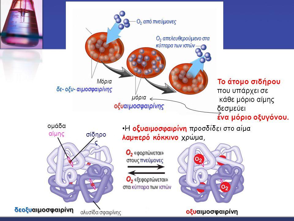 Η οξυαιμοσφαιρίνη προσδίδει στο αίμα λαμπερό κόκκινο χρώμα,