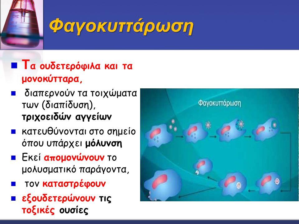 Φαγοκυττάρωση Tα ουδετερόφιλα και τα μονοκύτταρα,