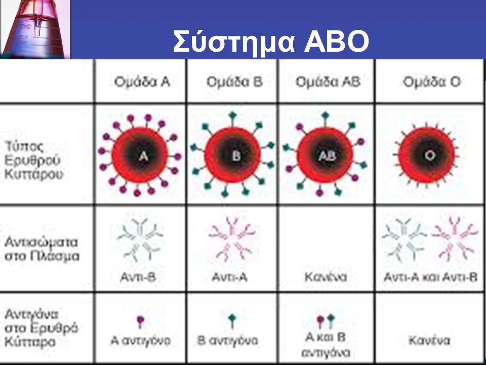 Σύστημα ΑΒΟ
