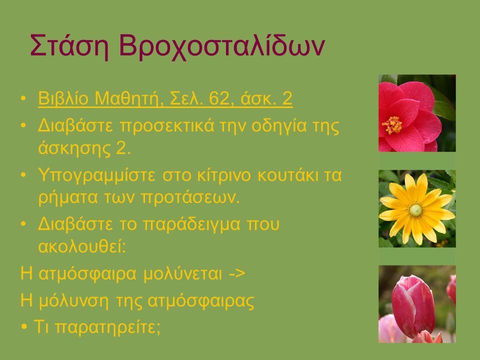 Στάση Βροχοσταλίδων Βιβλίο Μαθητή, Σελ. 62, άσκ. 2