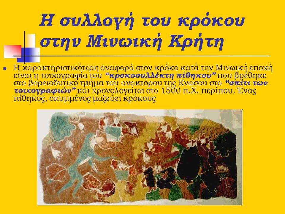 Η συλλογή του κρόκου στην Μινωική Κρήτη
