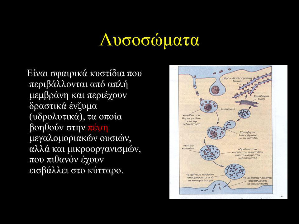 Λυσοσώματα