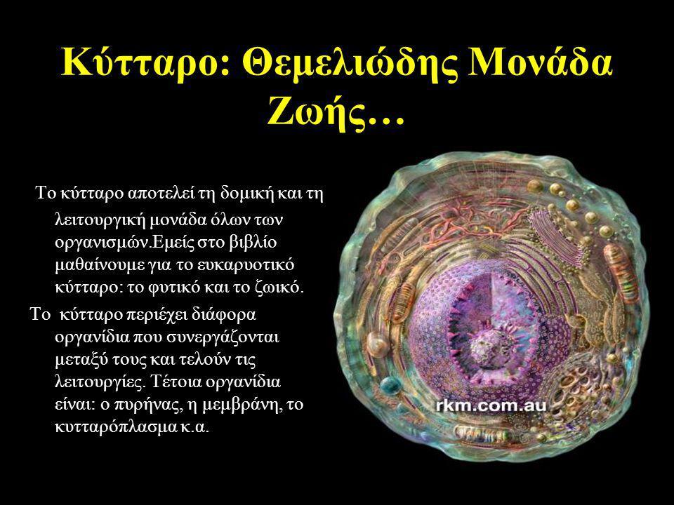 Κύτταρο: Θεμελιώδης Μονάδα Ζωής…