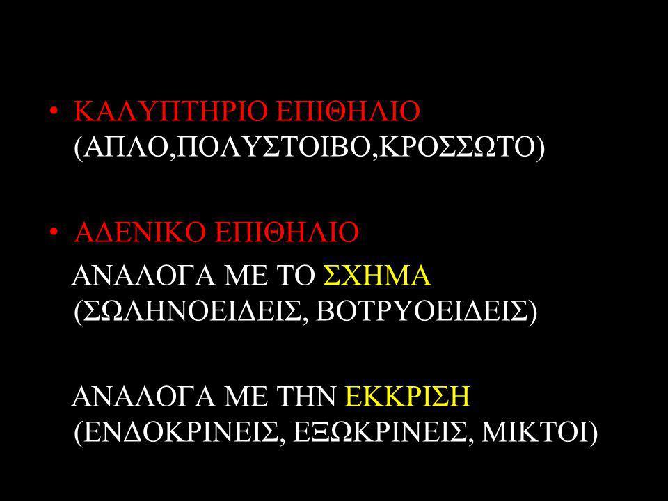 ΚΑΛΥΠΤΗΡΙΟ ΕΠΙΘΗΛΙΟ (ΑΠΛΟ,ΠΟΛΥΣΤΟΙΒΟ,ΚΡΟΣΣΩΤΟ)