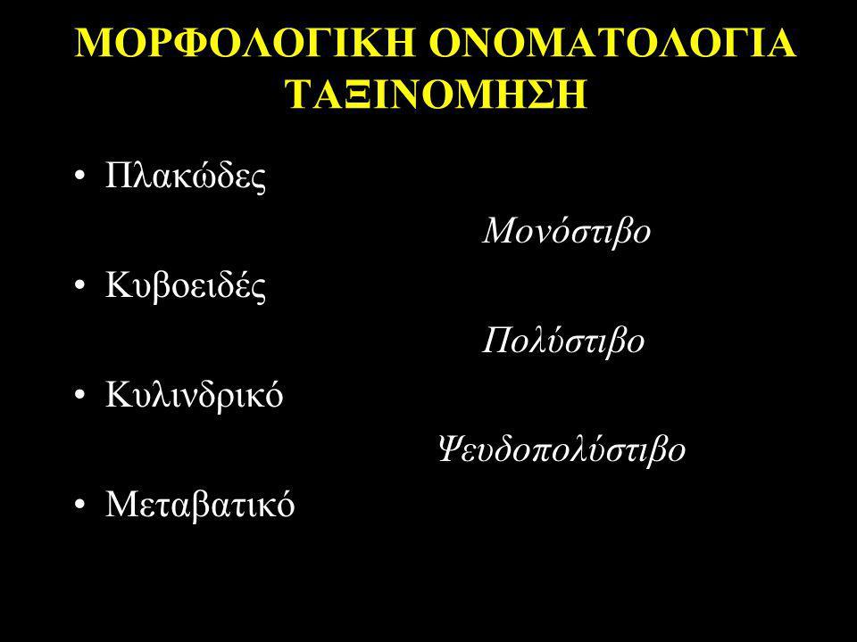 ΜΟΡΦΟΛΟΓΙΚΗ ΟΝΟΜΑΤΟΛΟΓΙΑ ΤΑΞΙΝΟΜΗΣΗ