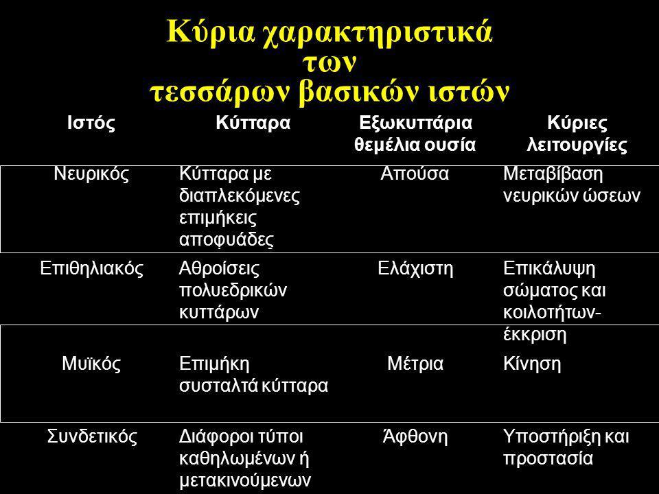 Κύρια χαρακτηριστικά των τεσσάρων βασικών ιστών