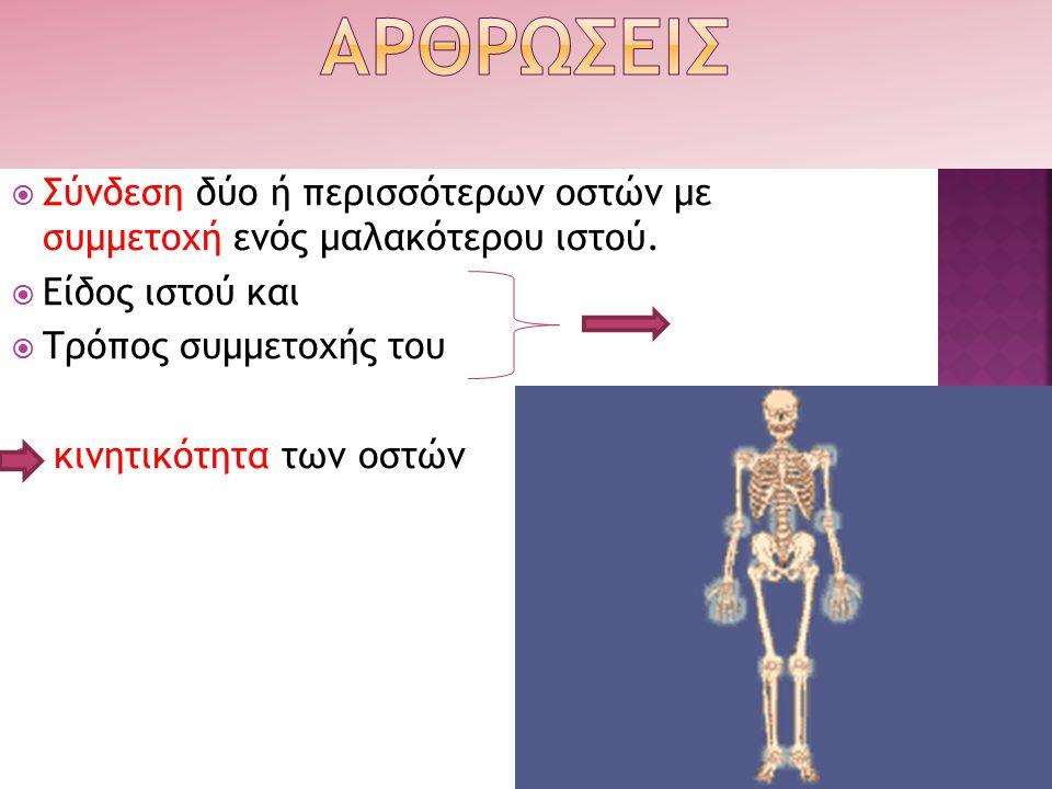ΑΡΘΡΩΣΕΙΣ Σύνδεση δύο ή περισσότερων οστών με συμμετοχή ενός μαλακότερου ιστού. Είδος ιστού και.