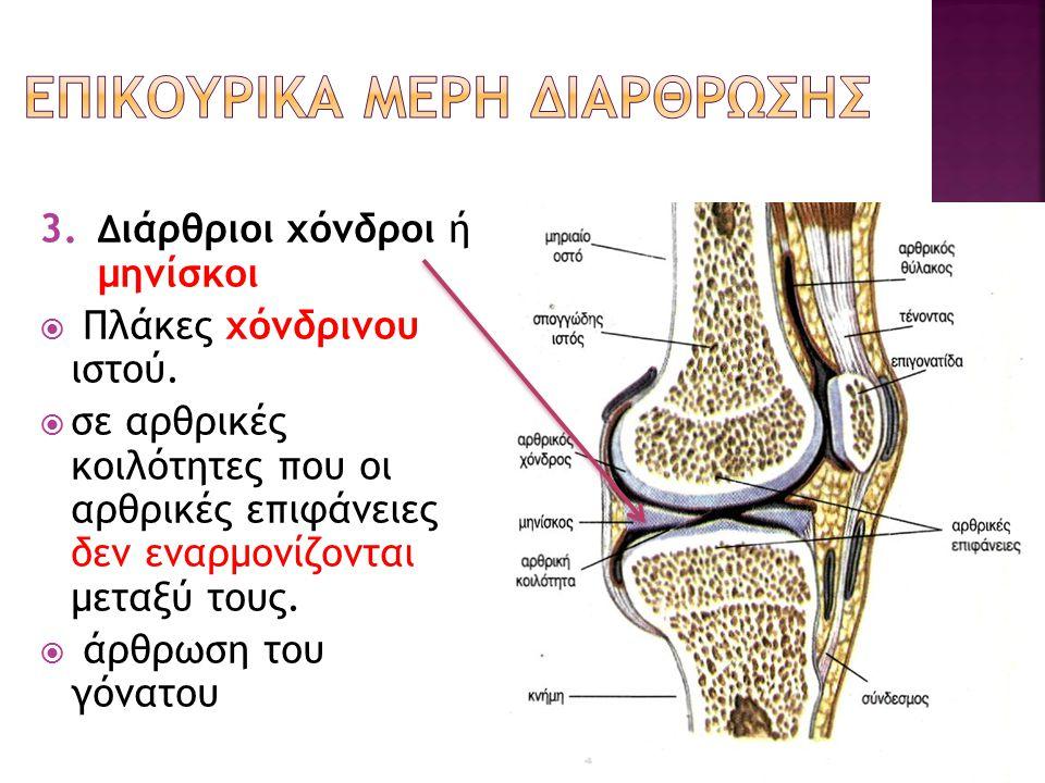 ΕΠΙΚΟΥΡΙΚΑ ΜΕΡΗ ΔΙΑΡΘΡΩΣΗΣ
